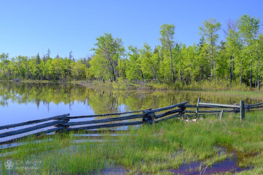 Morning at Unnamed Lake, near Green Lake