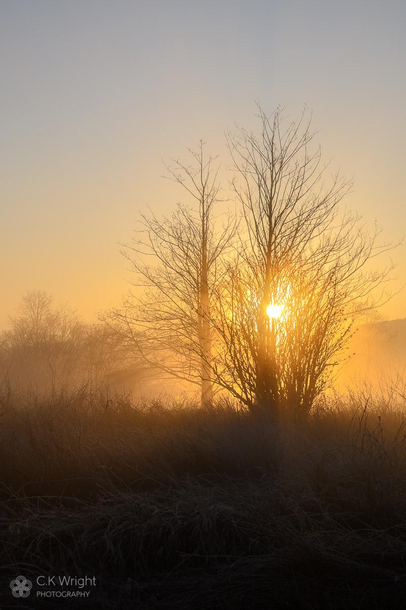 Morning at Willband Creek Park